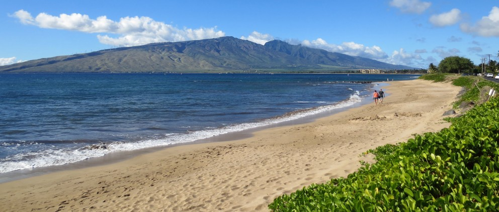 Warm Climate of Maui : Reducing Air Conditioning Costs